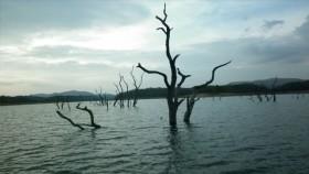 Thekkady Mullaperiyar Lake