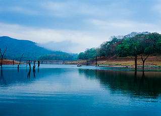 periyar lake in thekkady tourist spot